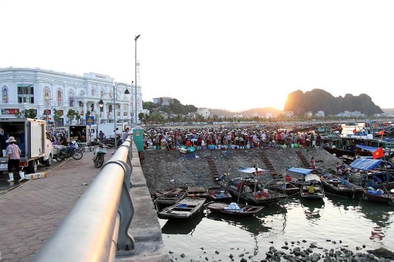 chợ cá Hạ Long